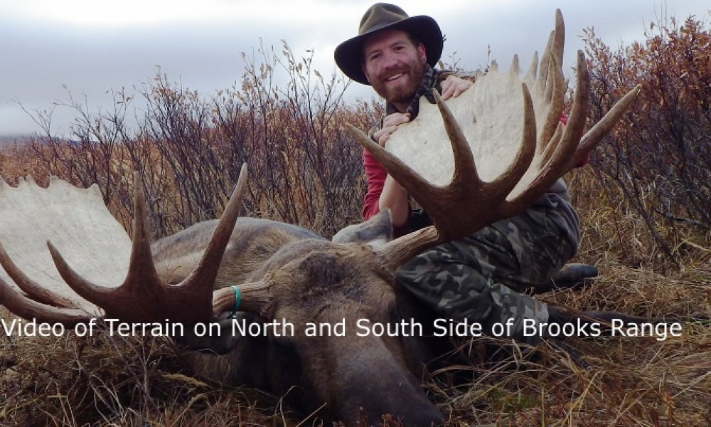 Brooks range self guided trophy moose hunts arrowhead outfiiters llc solutioingenieria Gallery
